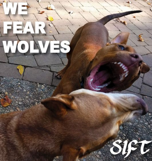We Fear Wolves cover